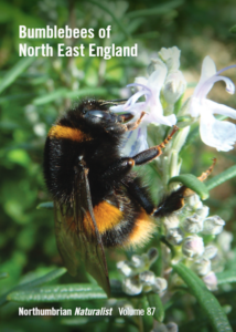 Bumblebees of North East England Cover