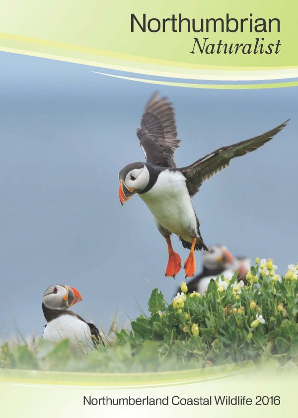 Cover of Coastal Wildlife 2016 Booklet featuring a Puffin