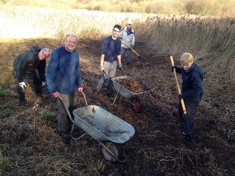 Volunteers clear reeds at Gosforth Nature Reserve